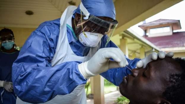Covid-19: Kenyan researchers identify virus strains