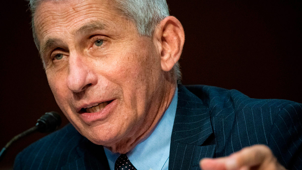 """Fauci warns: """"We are still knee-deep in the first wave of this"""""""