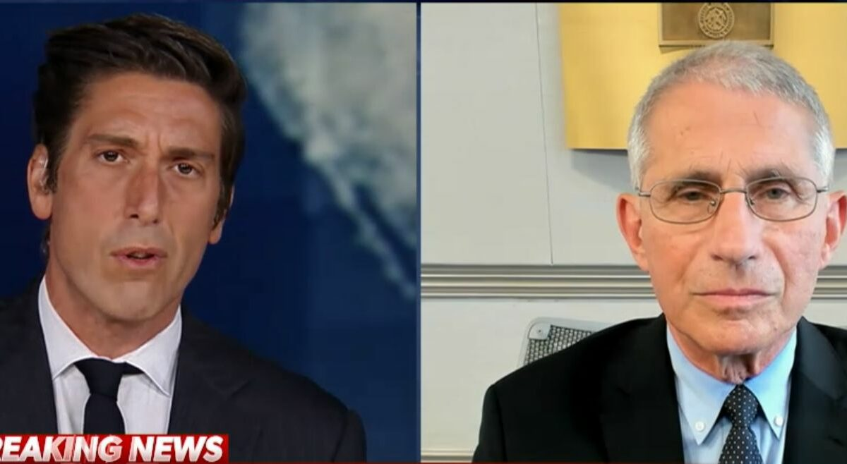 Fauci to David Muir: US in for 'difficult time' if COVID-19, flu outbreaks converge