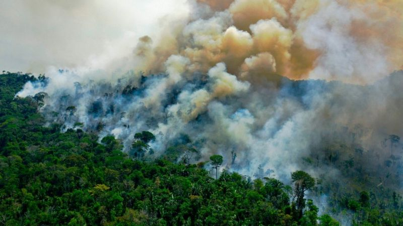 Amazon fires: Are they worse this year than before?