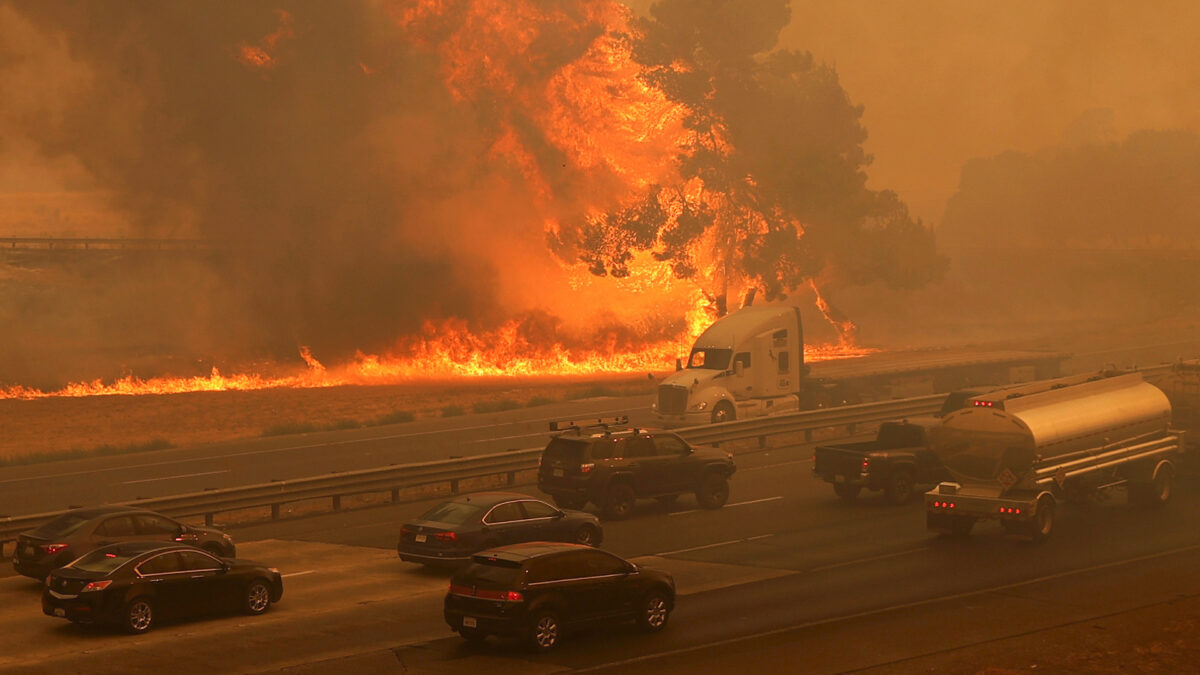 US West Coast fires: I don't think science knows about climate, says Trump